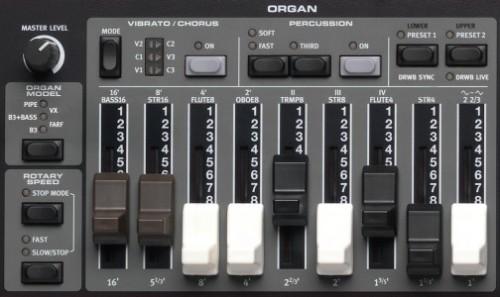 E5-OrganSection-504x300