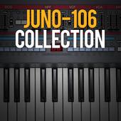 icon_JUNO-106