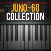 icon_JUNO-60