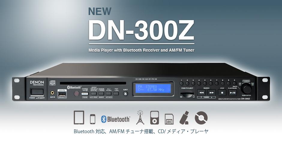 DN-300z_05