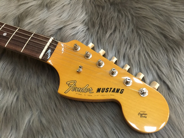 Japan Exclusive CLASSIC 60S MUSTANGのヘッド画像