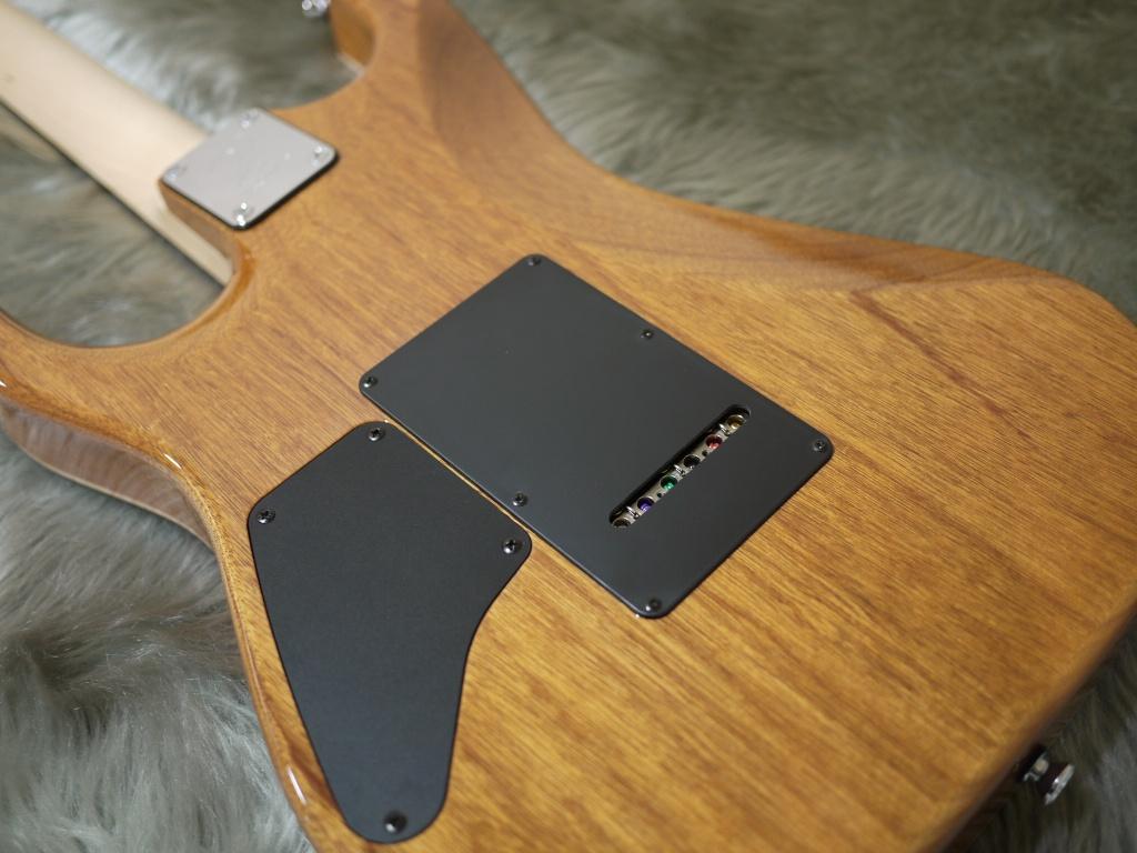 DST-DX22/R/MAHOのボディバック-アップ画像