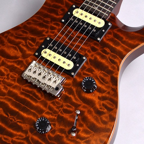 SE 30th Anniversary Custom24の全体画像(縦)