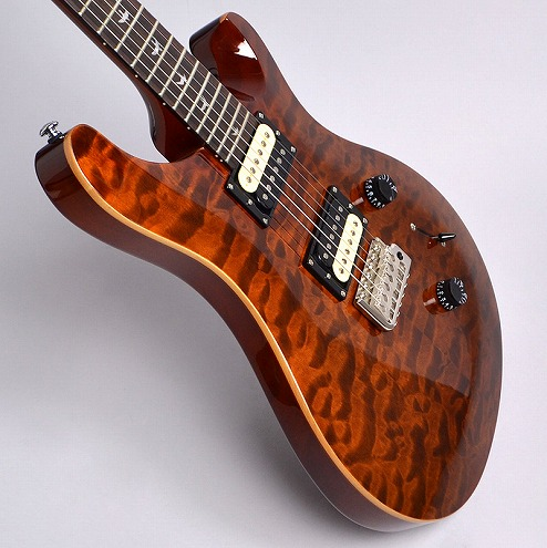 SE 30th Anniversary Custom24の指板画像