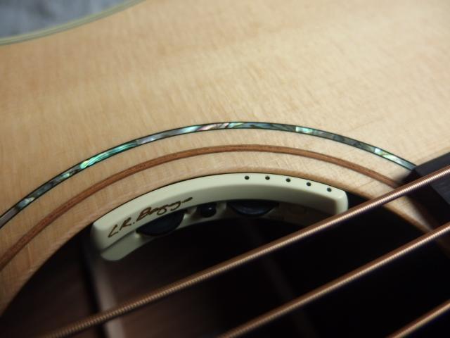 YBR2/バリトンギター with L.R.Baggs Anthemのケース・その他画像