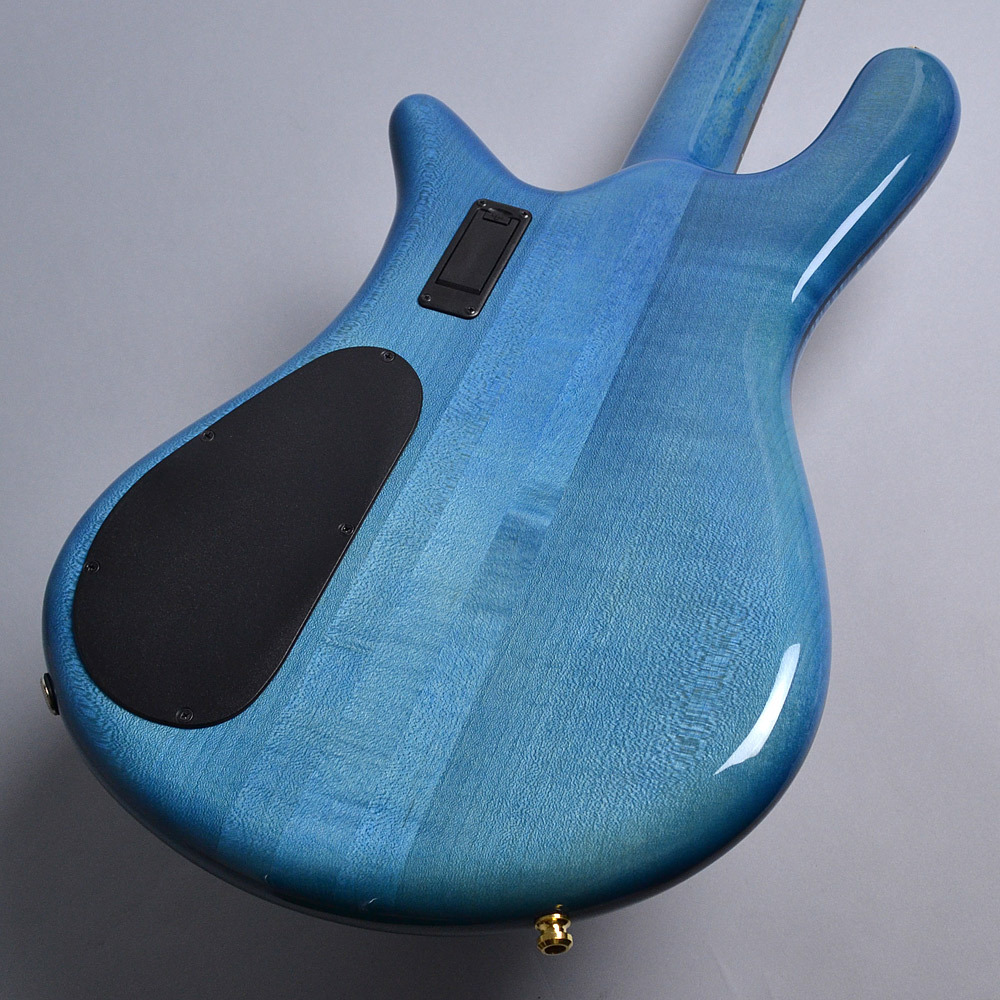 EURO 4 LX Premium Wood / Bahama Blueのボディバック-アップ画像