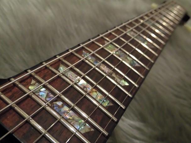 Tak Matsumoto Firebirdの指板画像