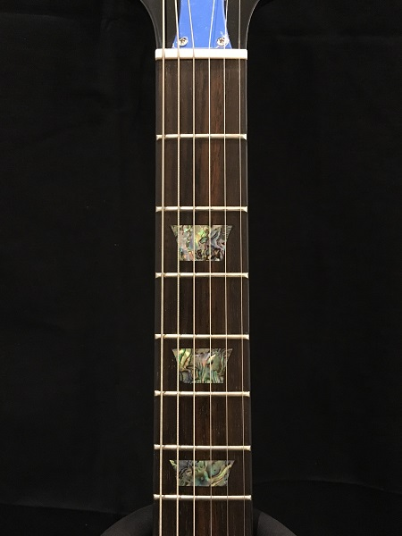 DC Standard Plus – Epiphone (Guitar)の指板画像