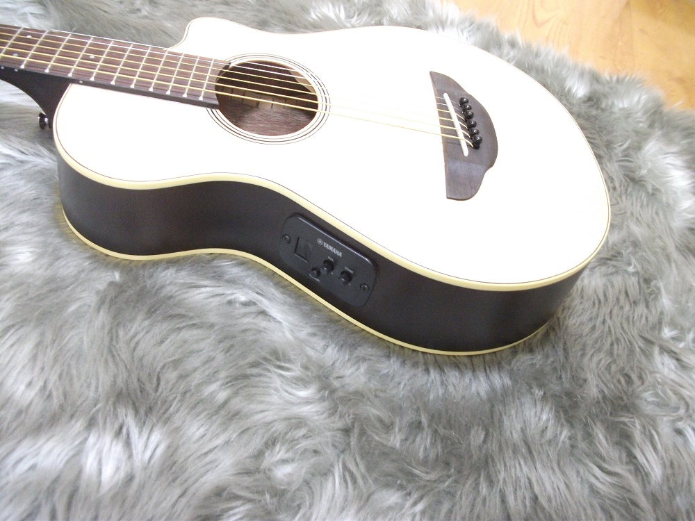 APX-T2のケース・その他画像