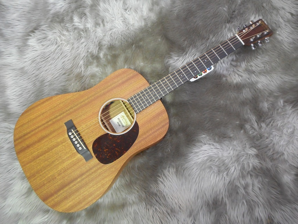 Dreadnought Junior2 SAPELEの全体画像