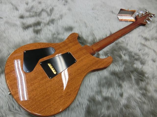 Custom24 2015KID LTDのボディバック-アップ画像