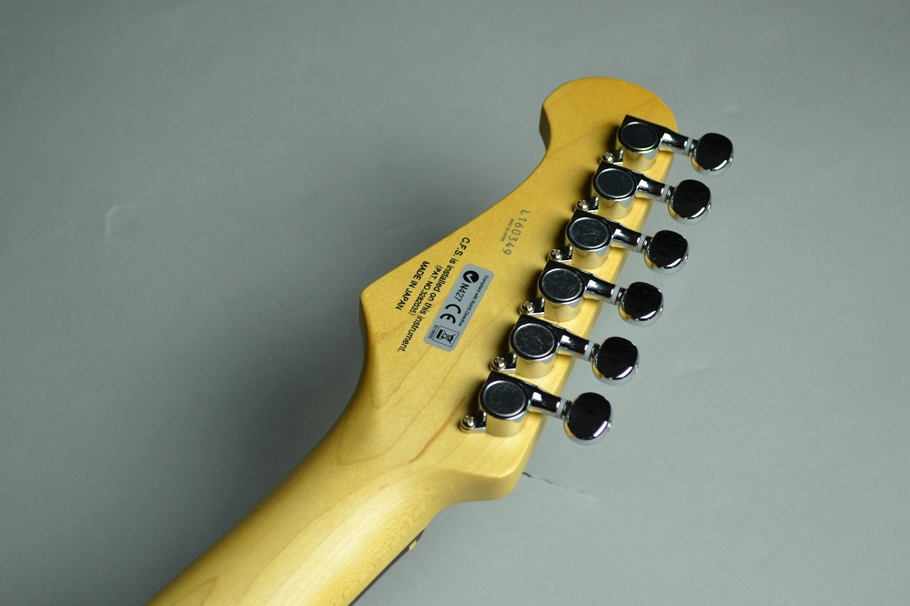 FgN JST6Rのケース・その他画像
