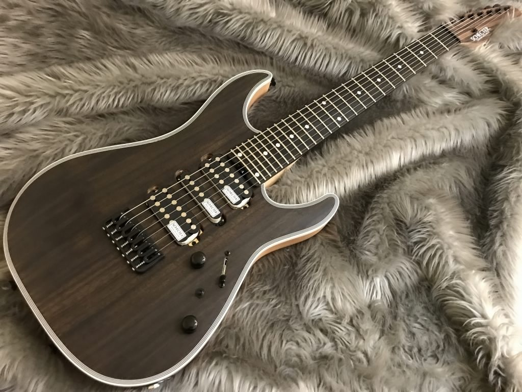 SCHECTER NV-7-24-MH-FXD/RNT/Eの全体画像