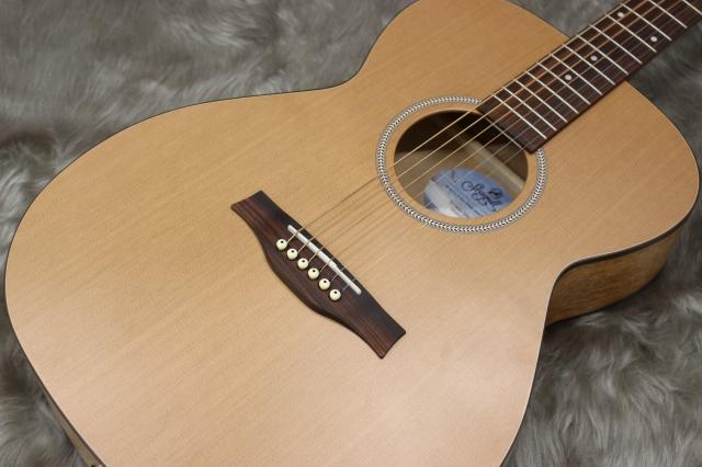 S6 Cedar Concert Hallのボディトップ-アップ画像
