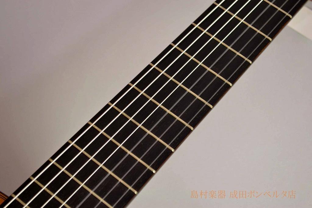 7-Stringの指板画像