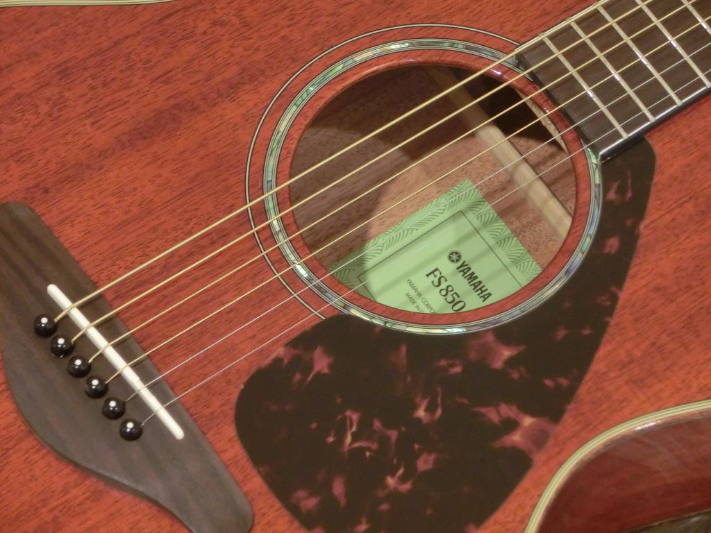 FS850のボディバック-アップ画像