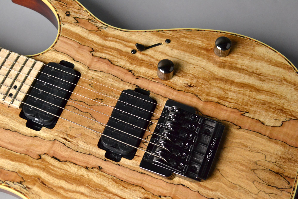 RG721MSM Natural Flat Spalted Maple Topのケース・その他画像