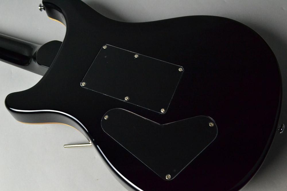 SE Floyd Custom 24 N/ GB Grey Blackのボディバック-アップ画像