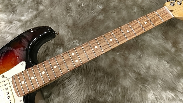 Fender American Pro Stratocaster®の指板画像