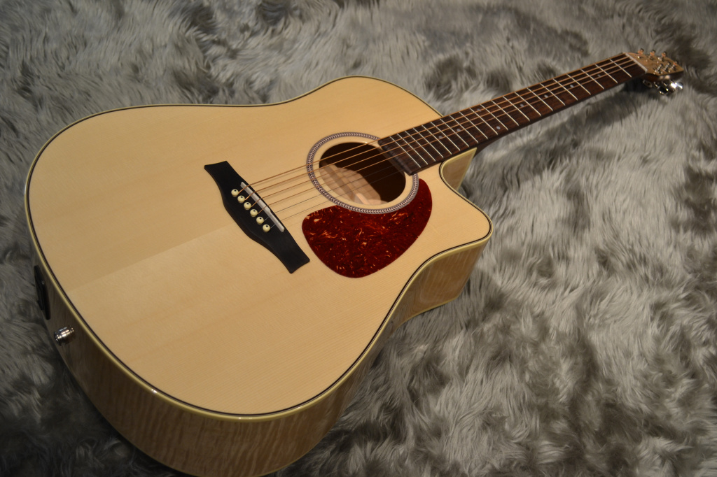 Performer Cutaway Flame Maple High-Gloss Quantum
