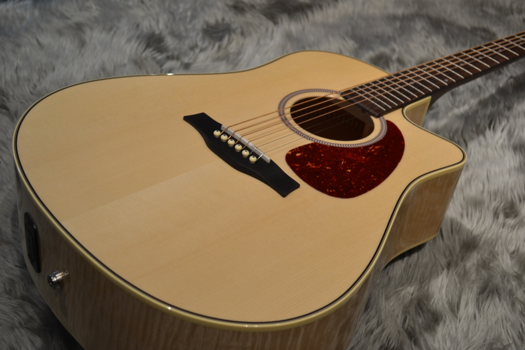 Performer Cutaway Flame Maple High-Gloss Quantumのボディトップ-アップ画像