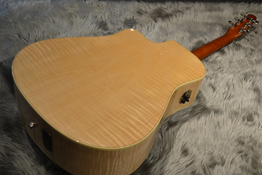 Performer Cutaway Flame Maple High-Gloss Quantumのボディバック-アップ画像