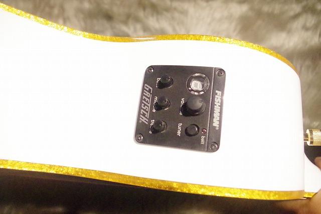 G5021WPE PENGUINのケース・その他画像