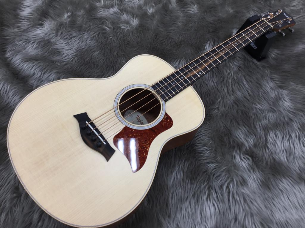 GS Mini-e Bass