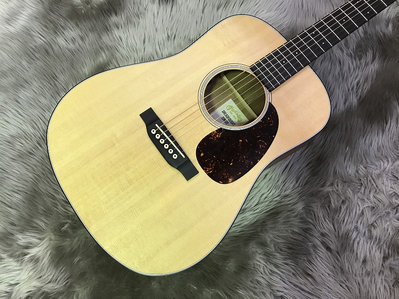 Dreadnought Junior Eの全体画像