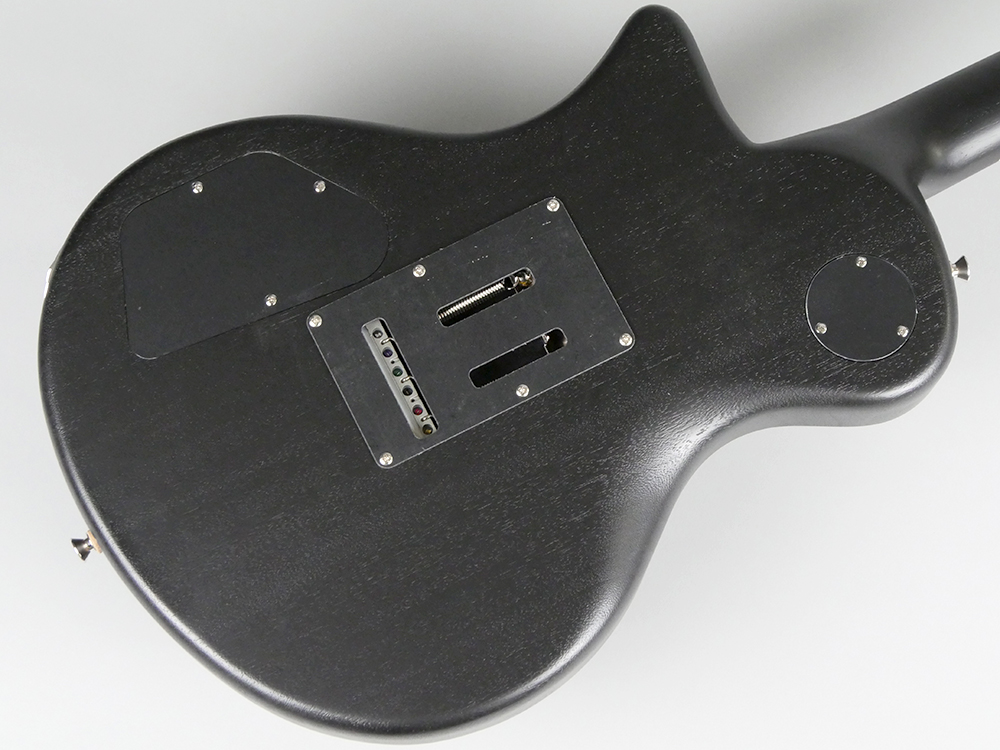 BLACK HORNETのボディバック-アップ画像