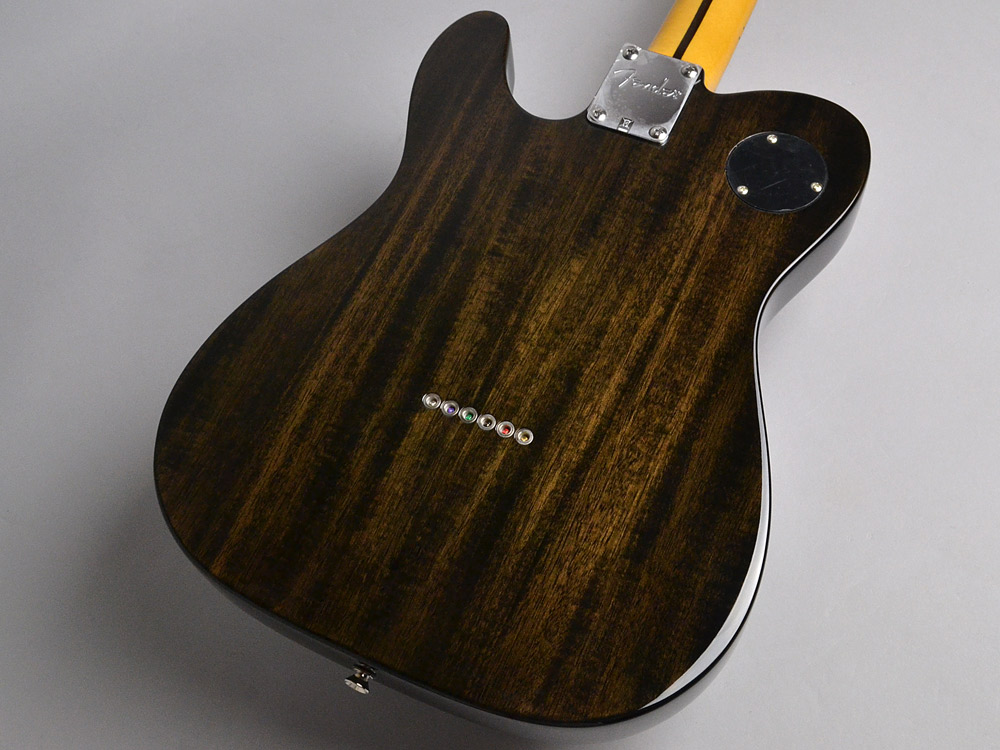 Modern Player Telecaster Thinline Deluxeのボディバック-アップ画像