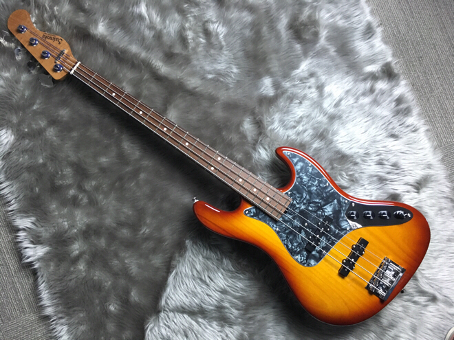 RV4LE BRのケース・その他画像