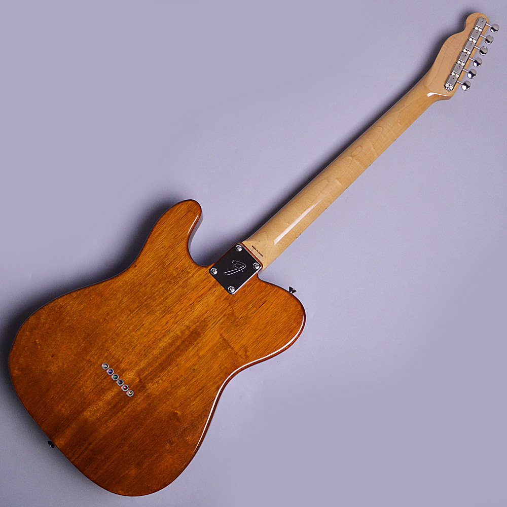 Japan Exclusive Series Classic 69 Telecaster Thinlineのボディバック-アップ画像