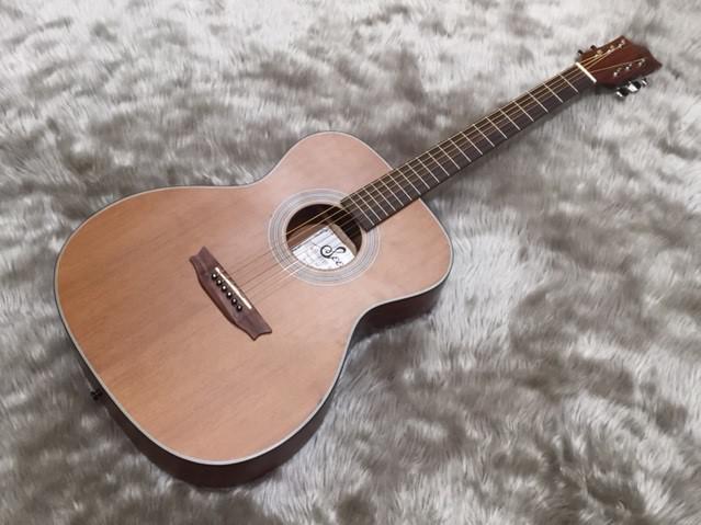 S1000-TS