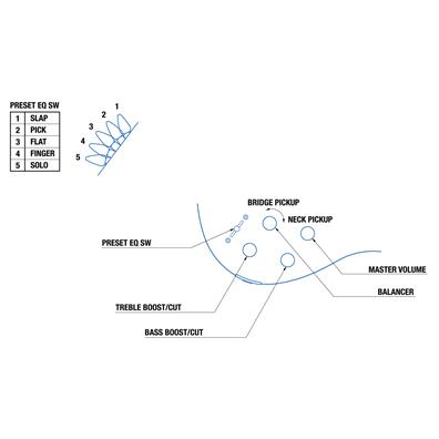 TRBX304の指板画像