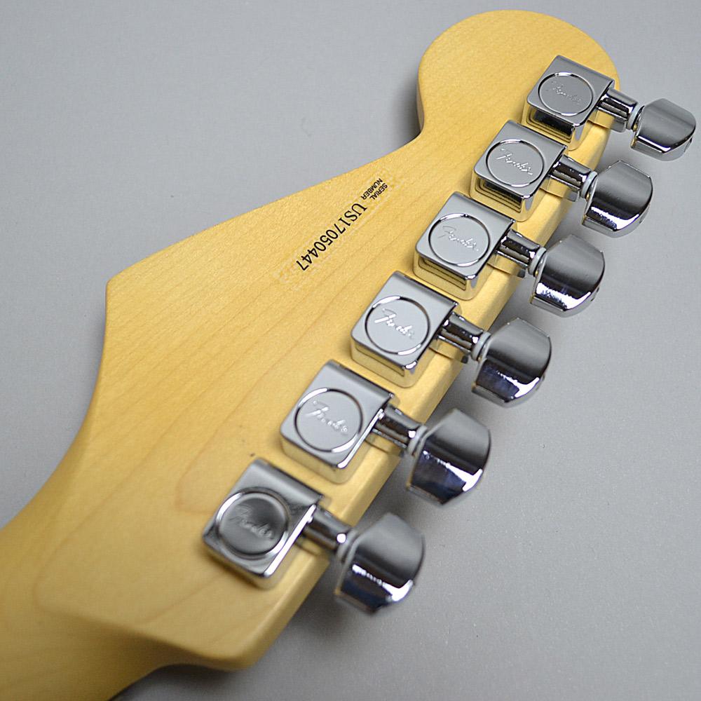 American Professional Stratcasterのヘッド裏-アップ画像