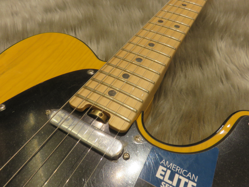 AM ELITE TELE/Mの指板画像