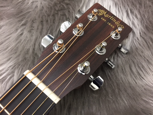 Dreadnought Junior 2 SAPELEのヘッド画像