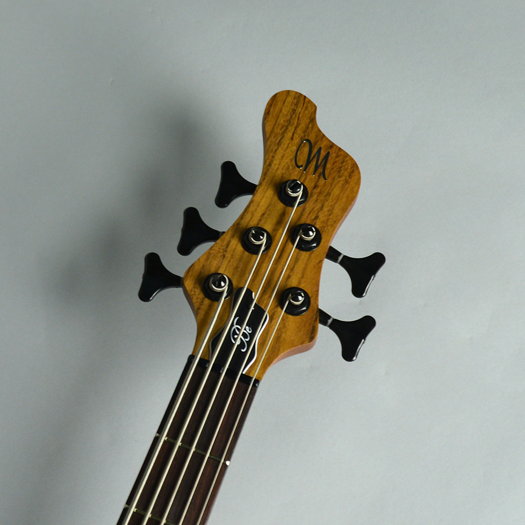 BE Exotic 5st / Aguilar DCB PUのヘッド画像