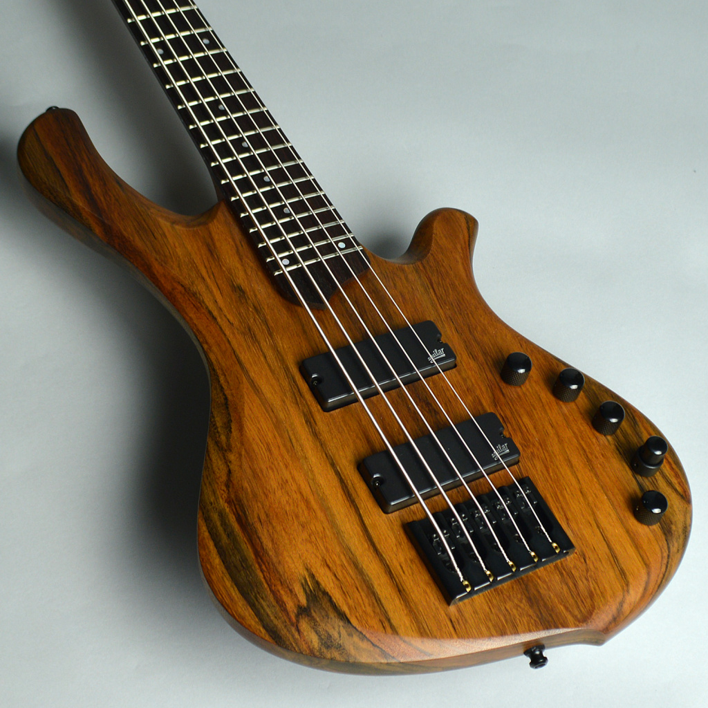 BE Exotic 5st / Aguilar DCB PUのケース・その他画像
