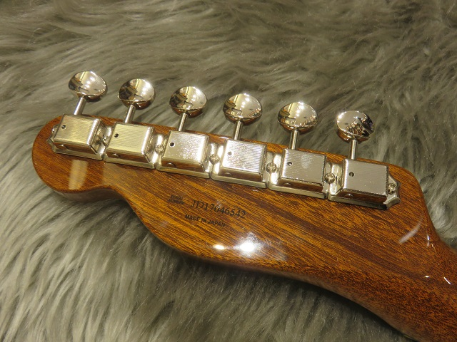 Fender Mahogany Offset TLのヘッド裏-アップ画像