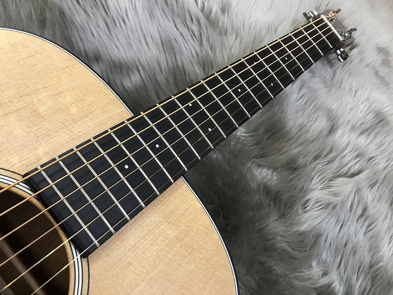 Dreadnought Junior Eの指板画像