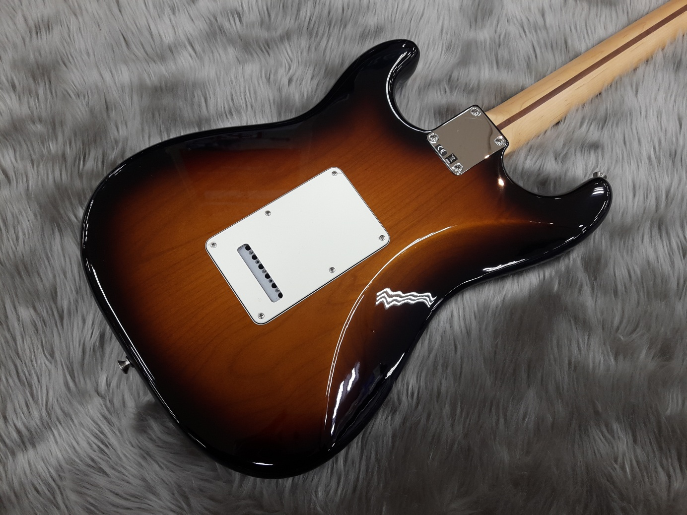 American Special Stratocaster RWのボディバック-アップ画像