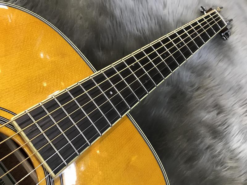 FS-TA トランスアコースティック™ギターの全体画像(縦)