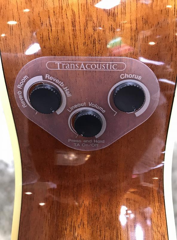 FS-TA トランスアコースティック™ギターのケース・その他画像