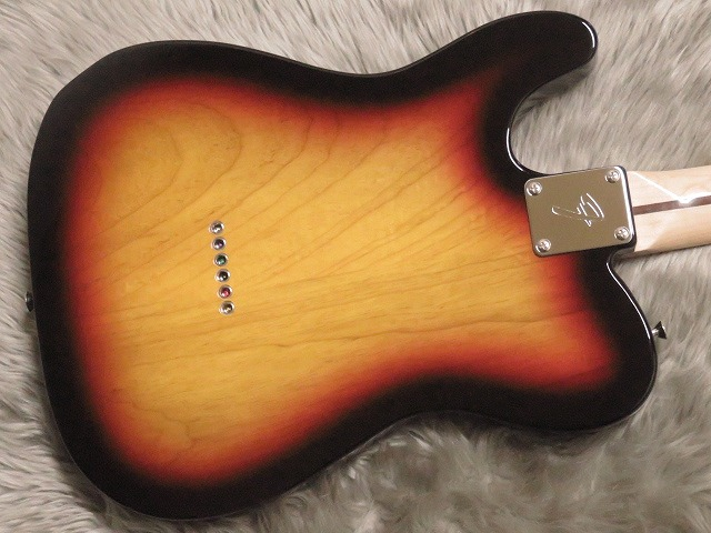 TRADITIONAL 70S TELECASTER® ASHのボディバック-アップ画像