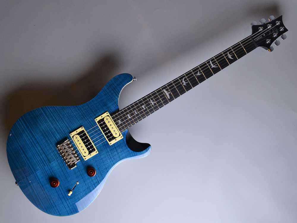 SE CUSTOM 24 N Blue Matteo (BT)【S/N:R15998】の全体画像