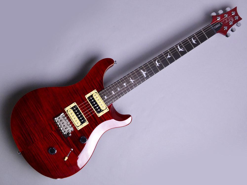 SE Custom 24 N
