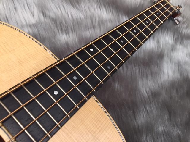 GS Mini-e Bassのボディバック-アップ画像