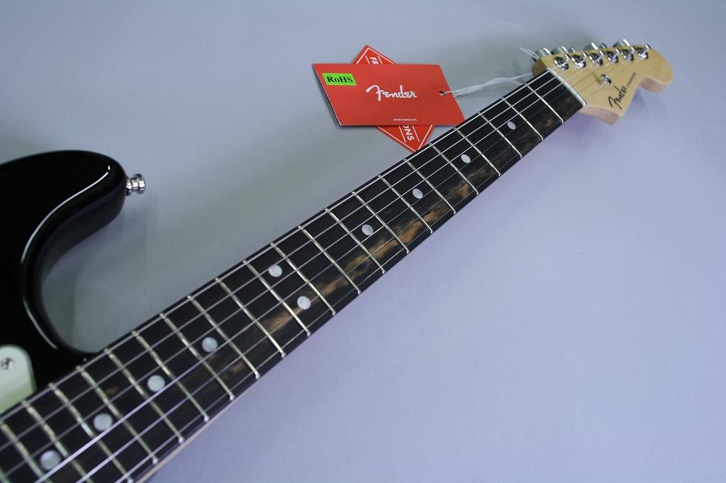 American Elite Stratocaster Ebony Fingerboardの指板画像
